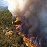 إعداد مخطط جديد لمكافحة الحرائق : فتح معابر على مستوى الأراضي والمساحات الغابية