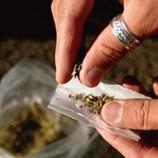 توقيف 4 مروجى مخدرات على مستوى حى البرتقال داخل علبة سيجارة